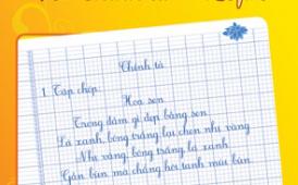 Gia sư tiểu học Phan Thiết